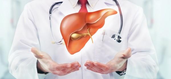 10 điều bạn có thể chưa biết về gan