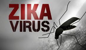 Số người Sài Gòn nhiễm virus Zika tăng lên 46