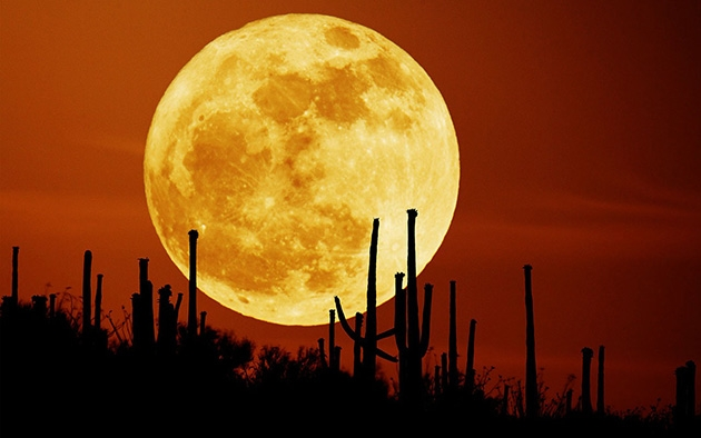 Siêu trăng ảnh hưởng đến sức khoẻ con người như thế nào