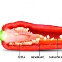 Rước bệnh do ăn quá nhiều ớt